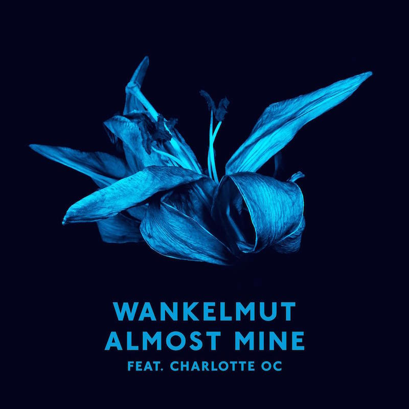Wankelmut feat. Charlotte OC - Almost Mine